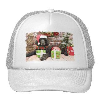Christmas - Standard Poodle - Bronco Hats