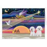 Christmas Star - Bichon Frise (two) Greeting Card