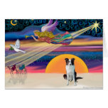 Christmas Star - Border Collie (brown) Greeting Cards