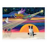 Christmas Star - Border Collie (brown) Postcards