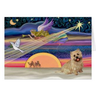 Christmas Star - Cairn Terrier 13 Card