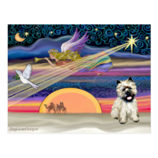 Christmas Star - Cairn Terrier 14 Postcard