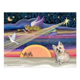 Christmas Star - Cairn Terrier 3 Postcard