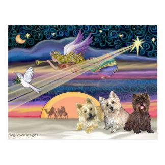 Christmas Star - Cairn Terrier (three) - Postcard