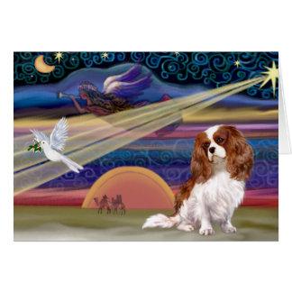 Christmas Star - Cavalier (Blenheim) Card
