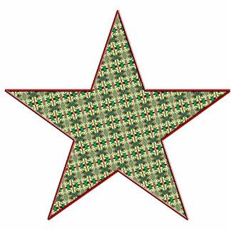 Christmas Star Cutout