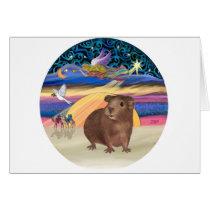 Christmas Star - Guinea Pig 3 Card