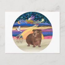 Christmas Star - Guinea Pig 3 Holiday Postcard
