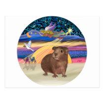 Christmas Star - Guinea Pig 3 Postcard