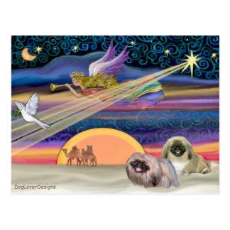 Christmas Star - Pekingese (two) Postcard