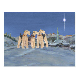 Christmas Star Post Cards
