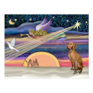 Christmas Star - Viszla 1 Postcard