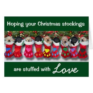 Christmas Stockings Gratitude Litter Greeting Card