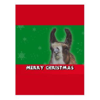 Christmas Stud Llama Happy New Year Postcards