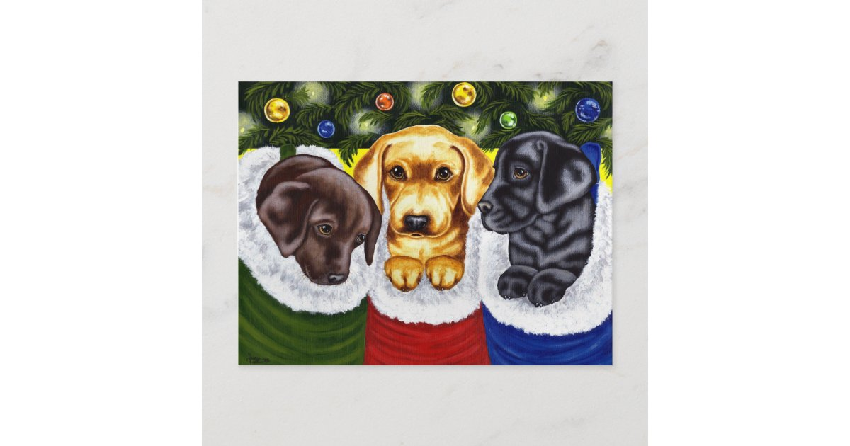 christmas surprise labrador puppies holiday postcard zazzlecom