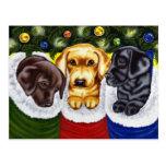 Christmas Surprise Labrador Puppies Postcard