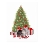Christmas Tabby at the Tree Post Cards