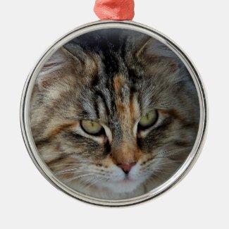 Christmas Tabby Feral Cat Potrait Metal Ornament