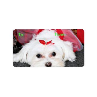 Christmas - Tinkerbell - Maltese Label