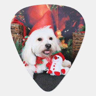 Christmas - Toby - Mixed Breed Guitar Pick