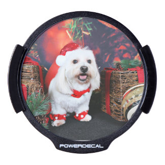 Christmas - Toby - Mixed Breed LED Window Decal
