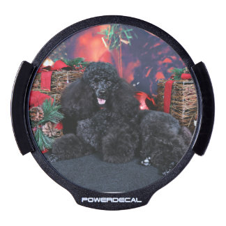 Christmas - Toby - Poodle LED Window Decal