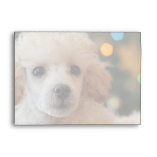 Christmas Toy poodle Envelopes