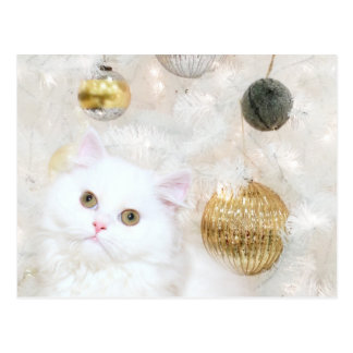 Christmas tree and kitty cat match postcard