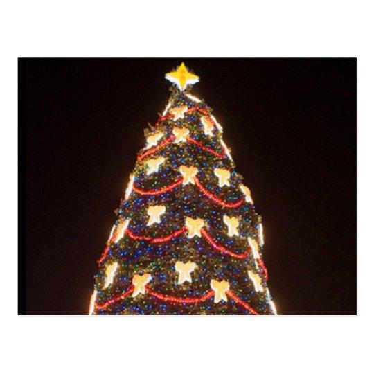 Christmas Tree at night Postcard