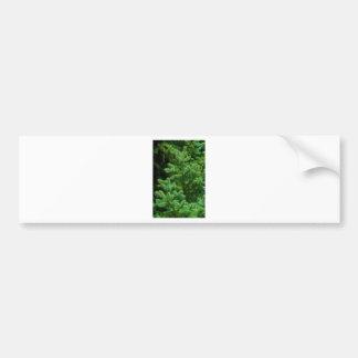 christmas tree branches bumper sticker