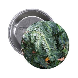 Christmas Tree Branches Evergreen Green Fir Pinback Button