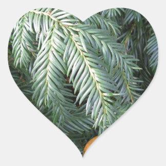 Christmas Tree Branches Evergreen Green Fir Heart Sticker