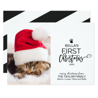 Christmas Tree Cat's First Christmas Photo Card