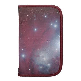 Christmas Tree Cluster - NGC 2264 Organizers