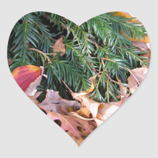 Christmas Tree Fir Evergreen Leaves Holiday Nature Heart Sticker