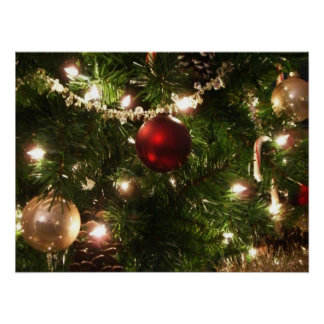 Christmas Tree I Holiday Pretty Green and Red Poster