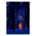 Christmas Tree In Lights Cards