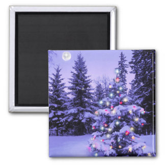 Christmas Tree in the Forest Magnet