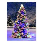 Christmas tree outside postcard
