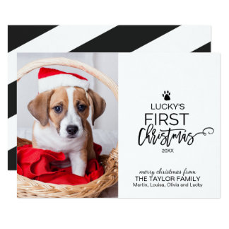 Christmas Tree Pet's First Christmas Photo Card