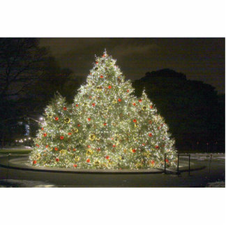 Christmas Tree Photo Cutouts