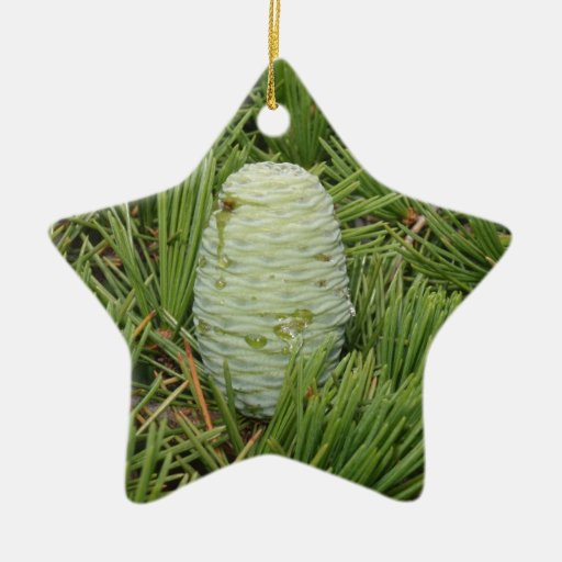 Christmas tree pine cone double sided star ceramic for Pine cone christmas tree ornaments