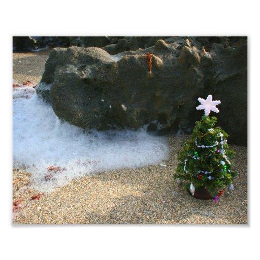 Christmas Tree Right Side Waves Rocks Photo
