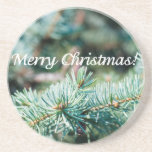 Christmas tree sandstone coaster