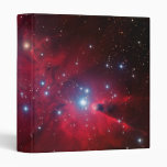 Christmas Tree Star Cluster Binder