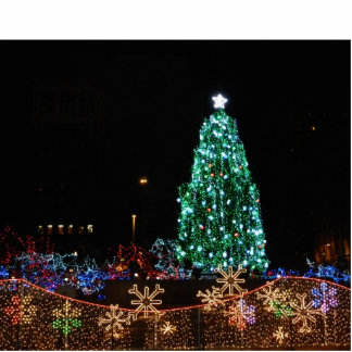 Christmas Tree with Lights Photo Sculpture
