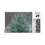 Christmas tree with snow postage stamps