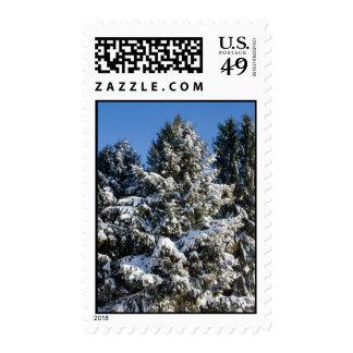 Christmas Trees Postage Stamps