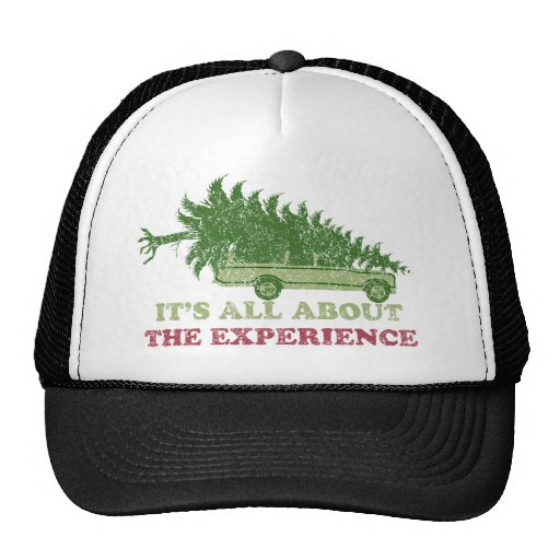 Christmas Vacation Experience Hat