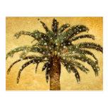 Christmas Vintage Tropical Palm Tree w Snowflakes Postcard